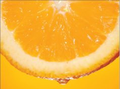 Vitamin C and septic shock
